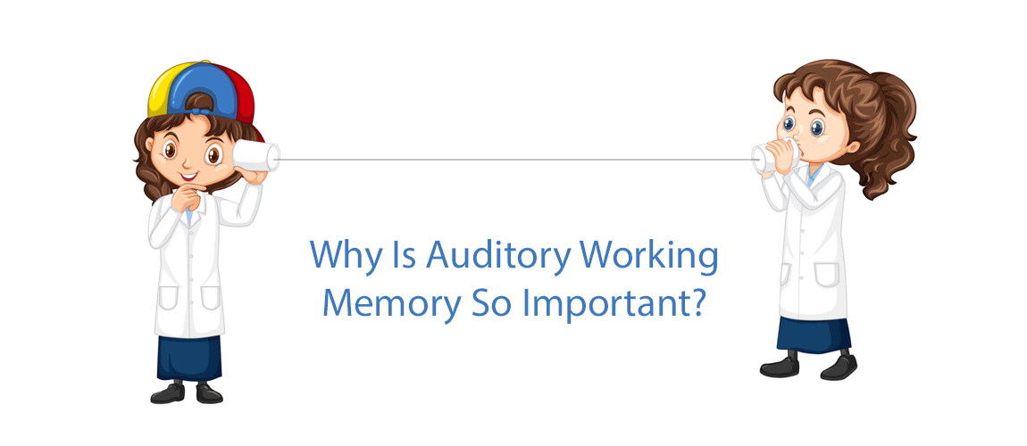 Why Is Auditory Working Memory So Important